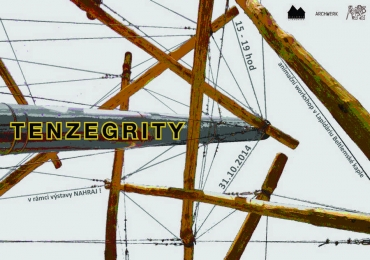 WORKSHOP TENZEGRITY
